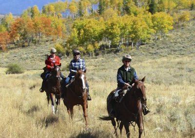 gallop enhanced