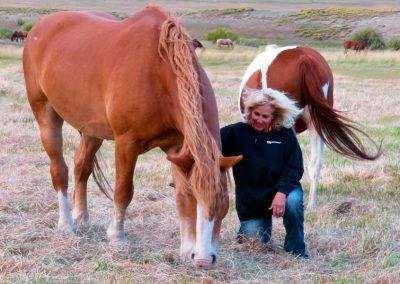 horse-bonding