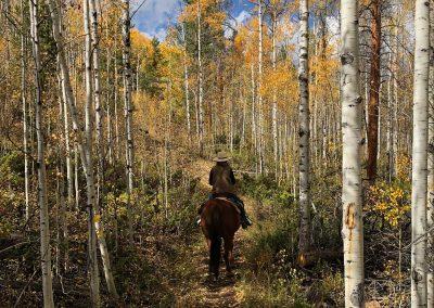 kaley-aspen-trail