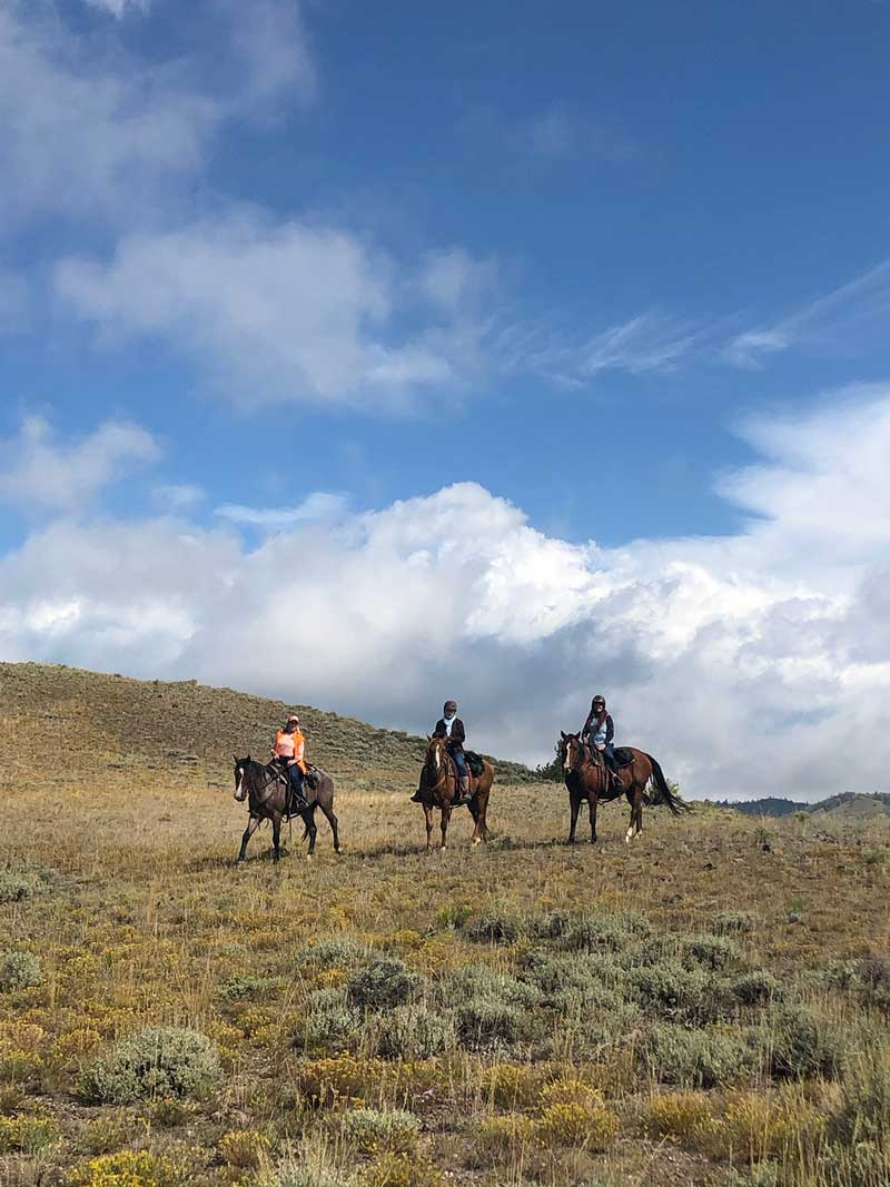 Riding horses high in the mountains of the Western USA is surreal.
